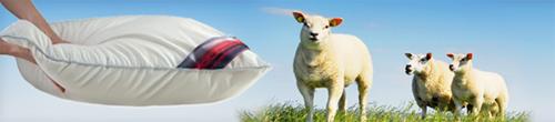 Wollen kussen met schapen op de achtergrond